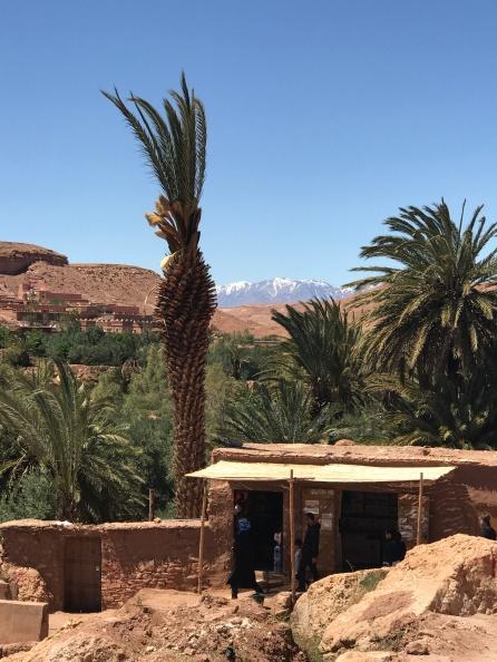 Views across the Atlas mountains